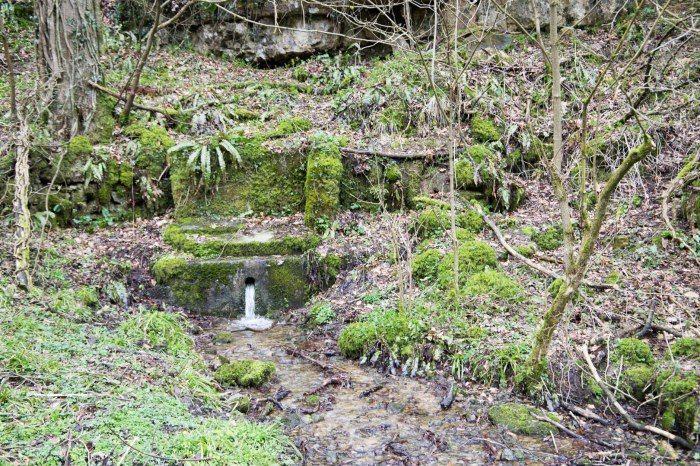 Climperwell Spring