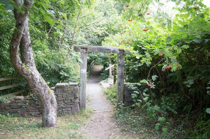 Henry Vaughn Physic Garden